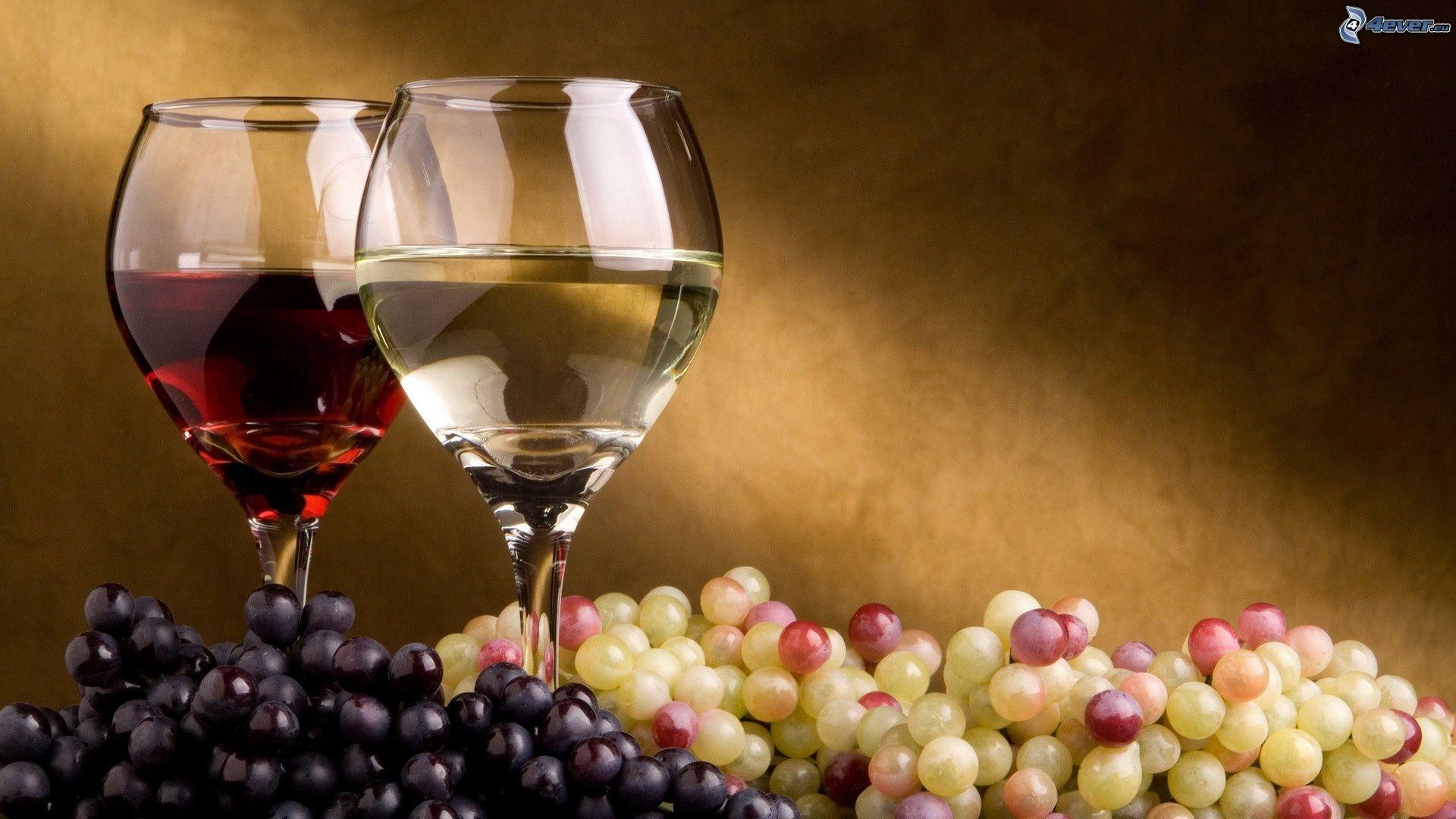 Vin de Madiran : se trouver une passion pour le vin